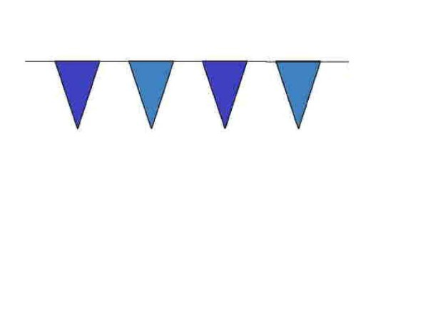 100ft Pennant String - Blue
