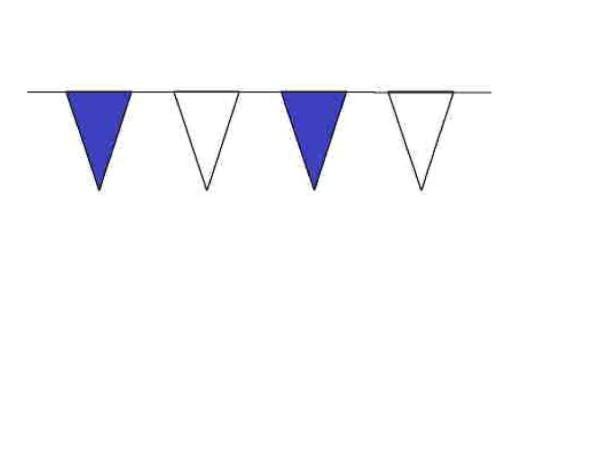 100ft Pennant String - B/W