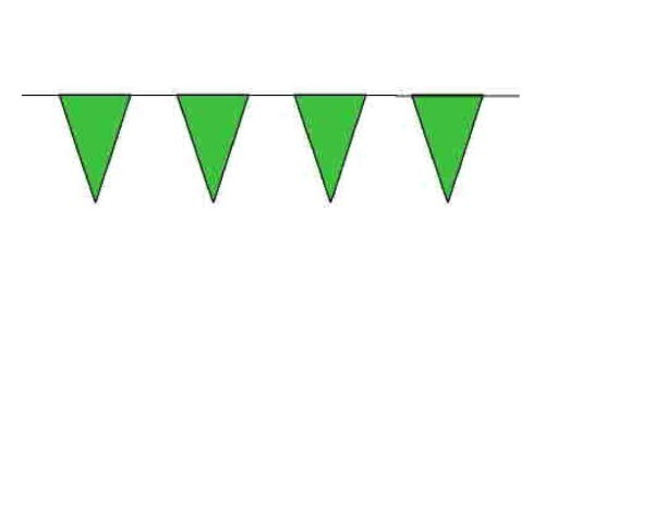 100ft Pennant String - Green