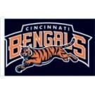 Cincinnati Bengals Flag