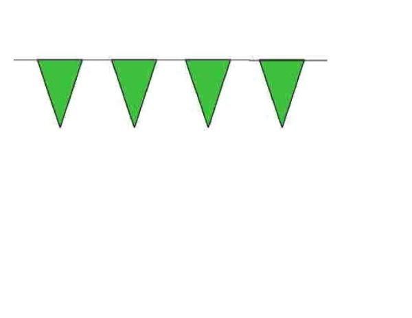 100ft Pennant String - Green