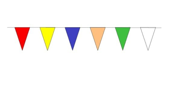 100ft Pennant String - Multicolor